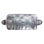 Goodyear Alaska windshield protector